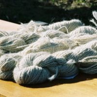 CLL_farm_raised_lama_wool