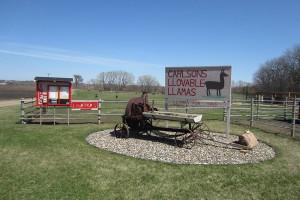 llama_farm