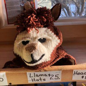 Llama Winter Hat