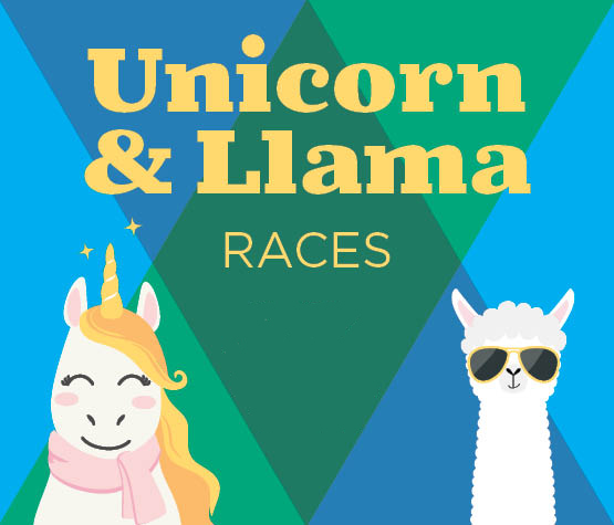 Canterbury Park Poster for Unicorn and Llama Races